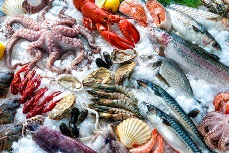 Fische Wirtschaft