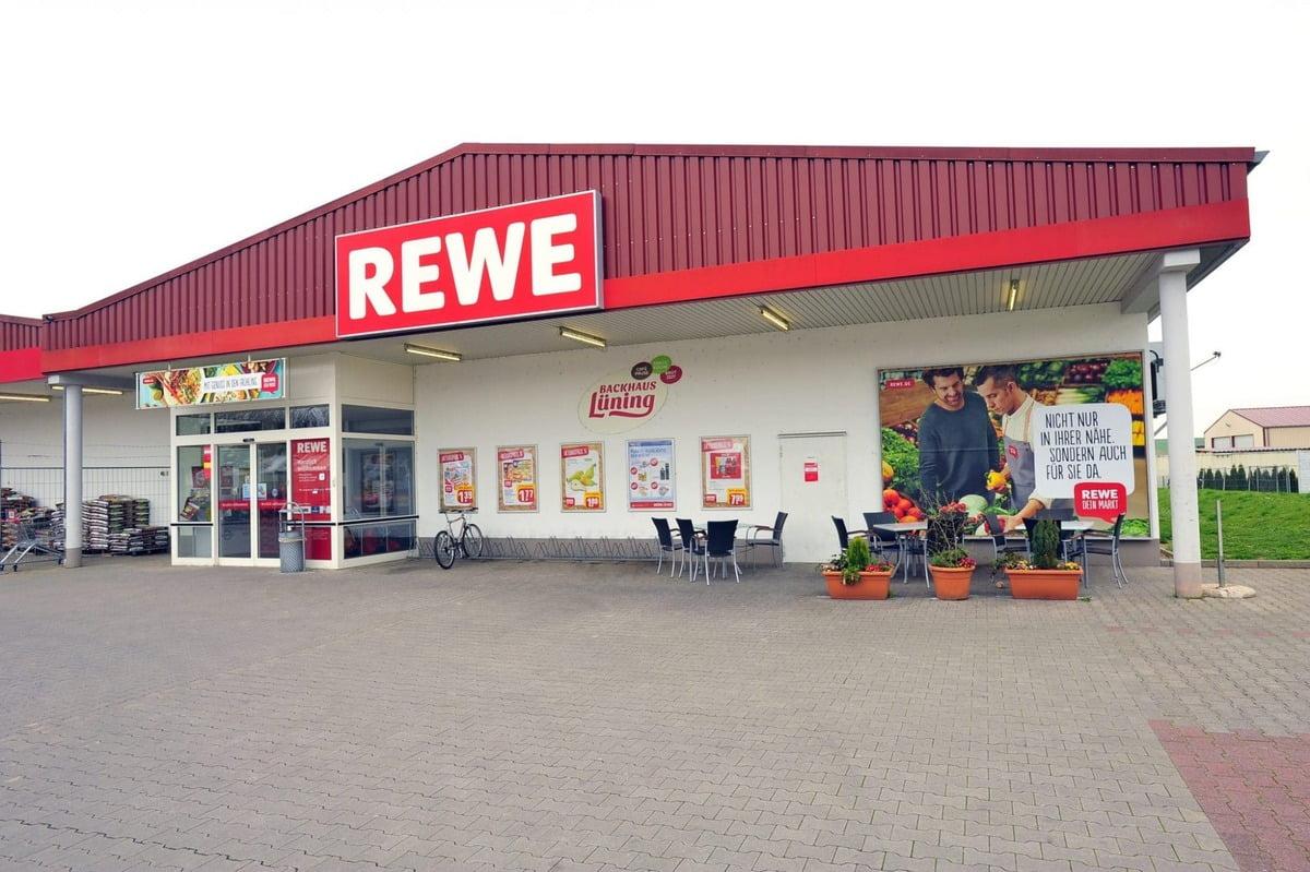 Der Rewe-Konzern – Supermärkte, Baumärkte, Touristik...
